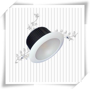 COB Led down light 30W